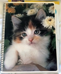 #schummer14 kitten notebook