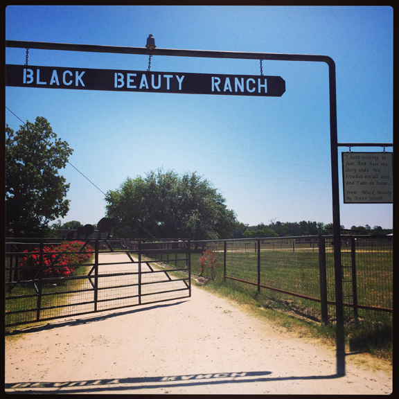 cleveland-amory-black-beauty-ranch-texas-scene-of-sex-in-bathroom